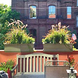 ledge planters in green over concrete with ornamental pennisetum grass