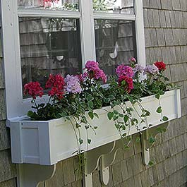 geraniums in window box with cottage brackets