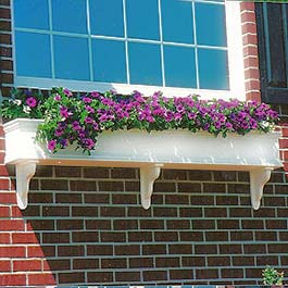 colonial window box on brick with purple flowers
