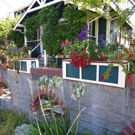 Red, white, and blue planter boxes on brick ledge