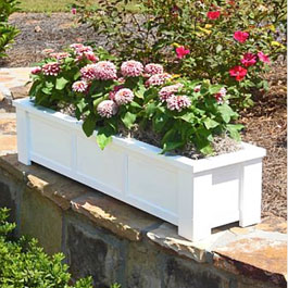 planter box sitting on stone ledge with pink Dhalia flowers