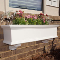 Traditional Window Boxes