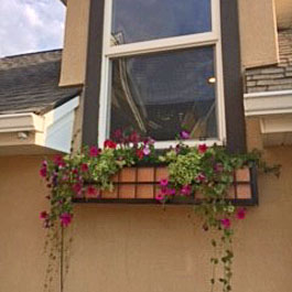 Springfield window box cage with copper insert