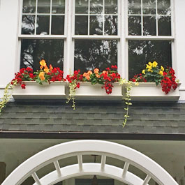 Three Traditional window boxes on triple window above front entrance