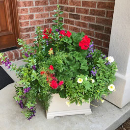 Centerpiece planter on front doorstep with gorgeous display