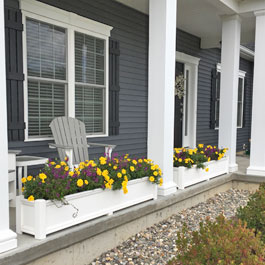 Purple and yellow marigolds in planters between front porch columns