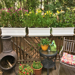 Porch Garden with rail planters