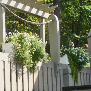 Cape Cod Planter on Dock