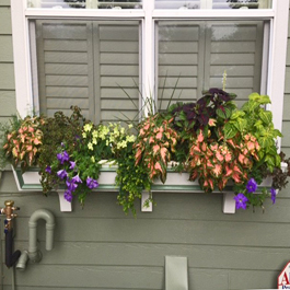 white tapered window box with green off color trim