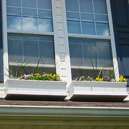 two windows next to each other with closely spaced window boxes