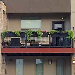 black window boxes on railing of modern style home
