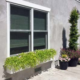 low to ground window box with green grass