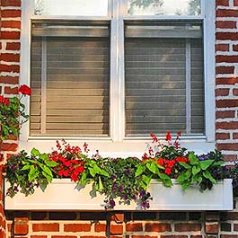red and green window box in syracuse new york