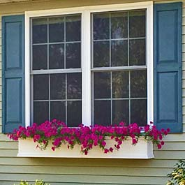 pink flower window box