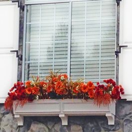fall window box with orange flowers and orange leaves