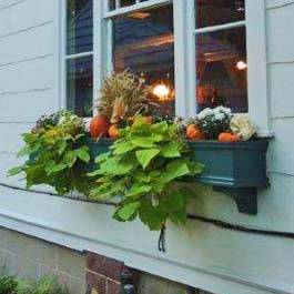 fall window box with hanging vines, pumpkins, and squash